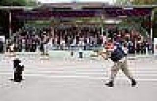 Jandarma Narkotik Köpeği Bahis 'Teslim Oldu'