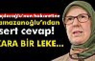 Kılıçdaroğlu'nun hakaretine Ramazanoğlu'ndan...