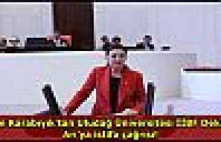 Lale Karabıyık'tan Uludağ Üniversitesi İİBF...
