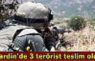 Mardin'de 3 terörist teslim oldu