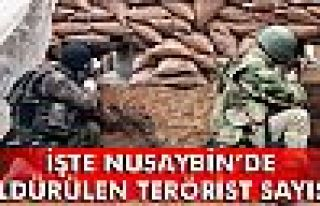 Nusaybin'de 192 terörist etkisiz hale getirildi