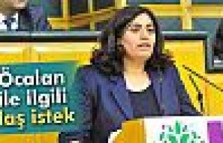 Sebahat Tuncel: 'HDP Heyeti Gitmesin, Öcalan heyete...