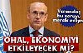 Şimşek: 'OHAL, ekonominin normal işlemesini engellemeyecek'