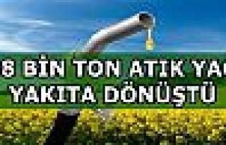 Türkiye'de kişi başına toplanan yıllık atık...