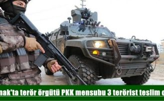 Şırnak'ta terör örgütü PKK mensubu 3 terörist teslim oldu