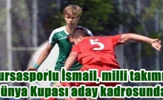 Bursasporlu İsmail, milli takımın Dünya Kupası aday kadrosunda