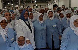 Bakan Selçuk: Kadın iş gücümüz son 11 yılda 4 milyon 244 bin kişi arttı