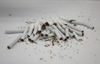 Tütün kullanımı önlenebilir ölüm nedenleri arasında ilk sırada