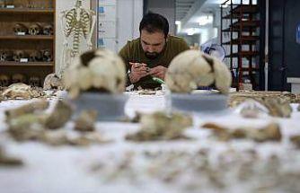 Anadolu'nun gizli 'DNA' hazinesini bulacak ilk laboratuvar