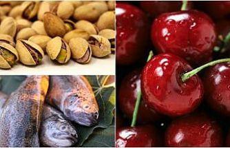 Çinliler daha çok Türk ürünü yiyecek