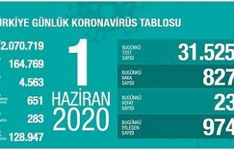 TÜRKİYE'DE KORONAVİRÜS RAPORU : VAKA SAYISI 824'E DÜŞTÜ