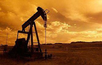 Petrol arama ruhsatı kararları uzatıldı