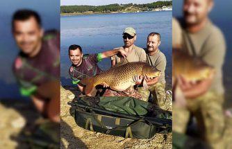 Bilecik'te amatör balıkçı yakaladığı dev sazanı gölete bıraktı
