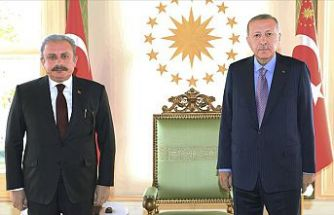 Cumhurbaşkanı Erdoğan, TBMM Başkanı Şentop'u kabul etti