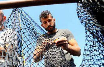 Marmara'ya ağ atacak balıkçılar umutlu