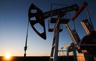 OPEC+ ülkeleri ocakta günlük petrol üretimini 500 bin varil artıracak