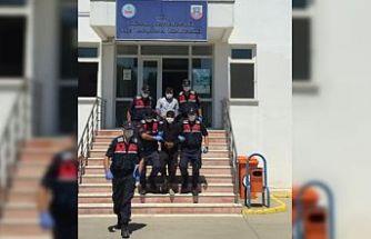 Sakarya'da 17 hırsızlık olayının 2 şüphelisi tutuklandı