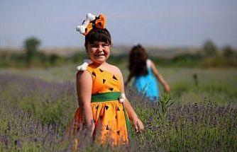 """Edirne'de """"Lavanta Tarla Günleri"""" 11 Haziran'da başlayacak"""