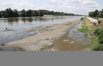 Edirne'de su seviyesi düşen nehirlerde adacıklar oluştu, yosunlar yüzeye çıktı
