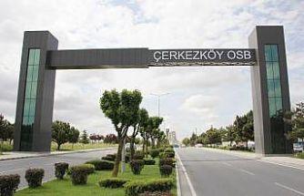 En fazla ihracat yapan 1000 firmanın 31'i Çerkezköy'den