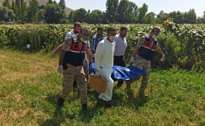 Kayıp vatandaş ayçiçeği tarlasında ölü bulundu