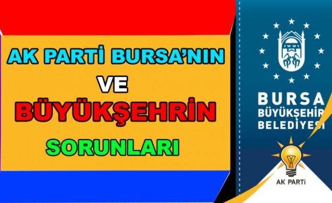 Ak Parti Bursa'nın ve Büyükşehrin Sorunları