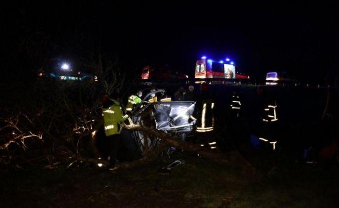 Sakarya'da ağaca çarpan pikabın sürücüsü öldü