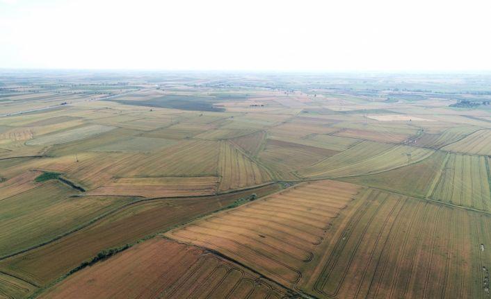 Ürün çeşitliliği bereketli Trakya topraklarını renklendiriyor